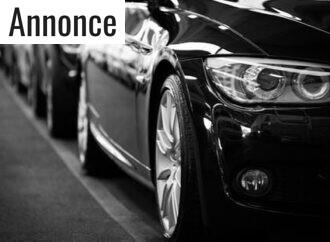 Hvilken bil skal jeg vælge?